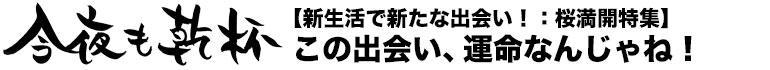 今夜も乾杯 【新生活で新たな出会い!桜満開特集】Cherish(チェリッシュ2号店)